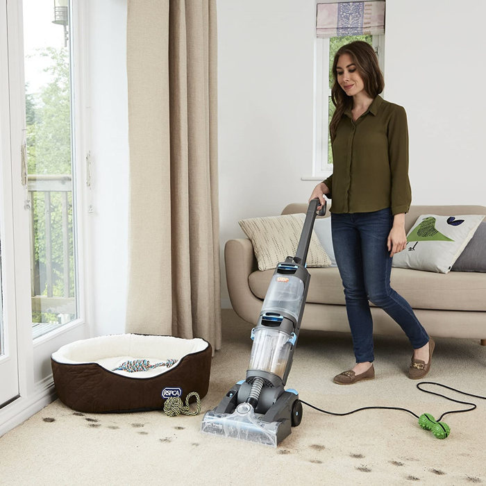 Best Rug Cleaners For Pet