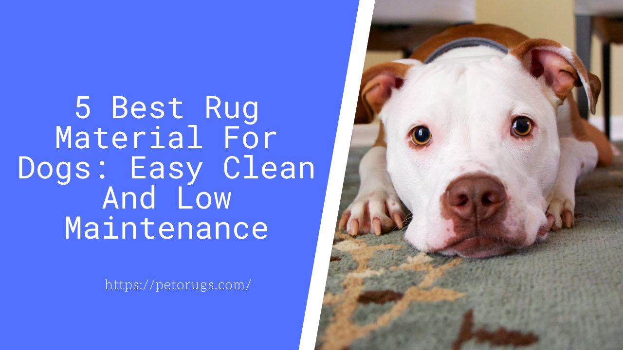 best rug material for dogs